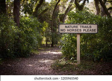 Nature trail in the rainforest. Sign with a signature in the forest on horseback entry is prohibited