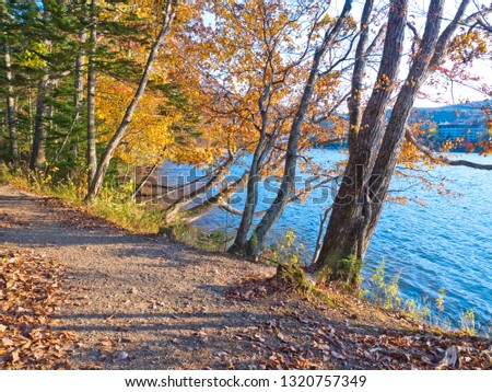 The nature trails at
