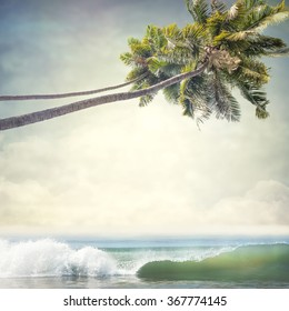 Nature tropic background in vintage style