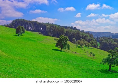 Nature of Turbenthal village with Swiss Alps in Winterthur district, Zurich canton in Switzerland.