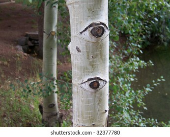 Nature is watching...