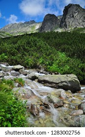 Nature water stream in High Tatras mountains Slovakia.