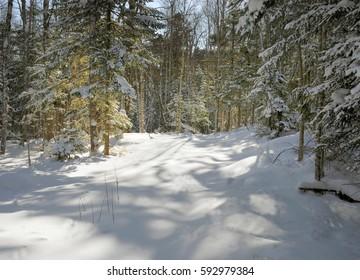 Nature in Winter in Primorsky krai, Russia