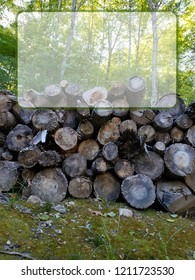 Nature wood pile sign with blank copy space