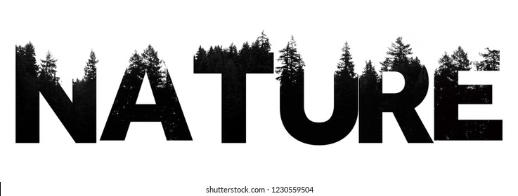 Nature word made from outdoor wilderness treetop lettering