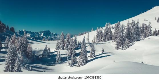 Naturpark Dobratsch Carinthia/Austria
