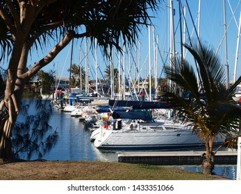 Nautical waterscape with boats berthed at a tropical waterfront marina including Palm trees and blue sky backdrop. Safe haven for sailing and cruising vessels. Moolooaba, Queensland Australia.