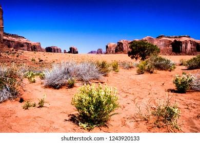 Navajo Land, Monument Valley, Navajo Tribal Park Loco Weed, Arizona, USA