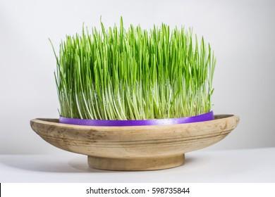 "Navruz / Nowruz holiday,  the spring ""New Year"" holiday."