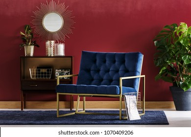Navy blue armchair with golden frame standing in burgundy room interior with wooden cupboard and Monstera Deliciosa
