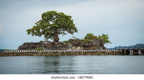 Near Kokos Village, Fak Fak province, West Papua