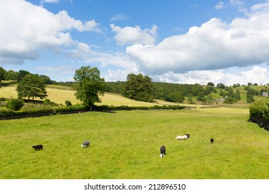 Near Sawrey country view by Hawkshead Lake District former village home to Beatrix Potter