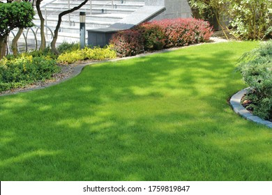 neat green lawn in the city near office premises