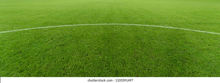 Neatly lush football pitch close-up