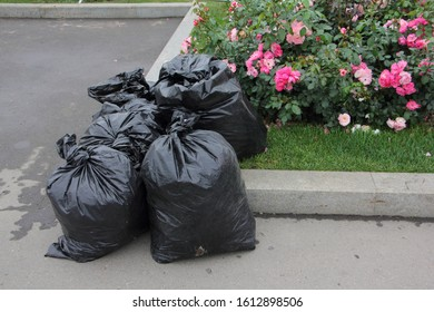 Neatly Packed ful black garbage bags next to a flower bed in Park, outdoor city cleaning, clean-up, environment