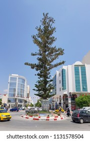 NEBEUL, TUNISIA - JUNE 21, 2018: The a large tree on a roundabout in the centre of Nabeul which is a coastal town in north-eastern Tunisia.