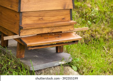 Nebo, Caernarfon, Wales, UK - July 23, 2015: Industrious bees crossing over at the entrance to a wooden WBC William Broughton Carr beehive. The hive is resting on a piece of slate to keep it stable.