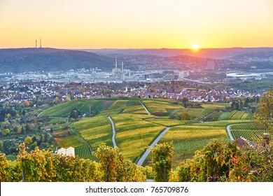 Neckar Velley in Stuttgart / colorful wine growing region in the south of Germany