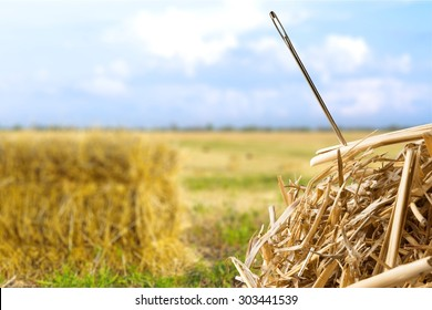 Needle in a Haystack, Searching, Haystack.