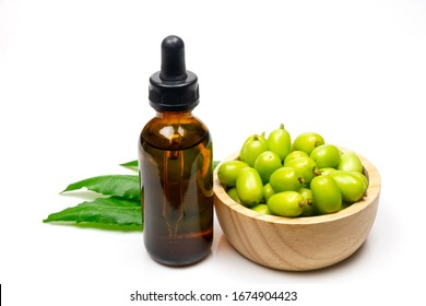 Neem oil in bottle green leaf and neem fruit on wooden bowl isolated on white background. Neem oil is an excellent moisturizing oil and contains various compounds that have insecticidal and medicinal