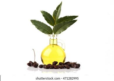 Neem, Neem Tree, Nim, Margosa, Quinine, Holy tree, Indian Margosa Tree, Pride of china, Siamese Neem Tree (Azadirachta indica A.Juss.) Leaves, seeds and neem oil.