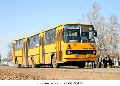 NEFTEKAMSK, RUSSIA - APRIL 6, 2008: Yellow Ikarus 280 articulated city bus at the city street.