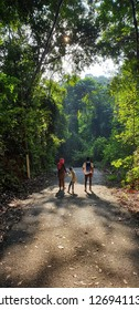 NEGERI SEMBILAN, MALAYSIA - DECEMBER 29, 2018 : THE PATH OF LIGHT, EARLY MORNING TRAIL WALKING ALONG THE HILL