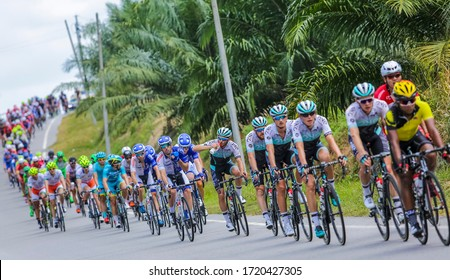 NEGERI SEMBILAN, MALAYSIA - FEBRUARY 25, 2016: Riders compete during Le Tour de Langkawi (LTDL) 2016. LTDL is a multiple-stage bicycle race held in Malaysia.