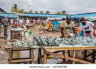 Negombo Sri Lanka July 24 2017 - Man selling fish at the fish market in Negombo