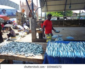 NEGOMBO, SRI LANKA - March 2016: Fish market at Negombo, Sri Lanka. Counter with raw fresh fish, Sri Lanka