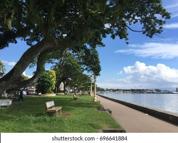 Negros Oriental, Philippines; August 12, 2017: Rows of huge acacia trees, lamp posts and park benches can be found along Dumaguete City's boulevard.