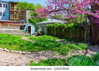 Neighborhood Community Garden in Logan Square Chicago during Summer