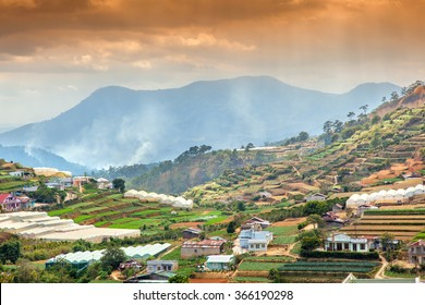 Neighborhood of Dalat, Vietnam. Rice fields, beautiful landscape.