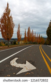 Neighborhood street by multi family apartments in Happy Valley suburban residential area during fall season