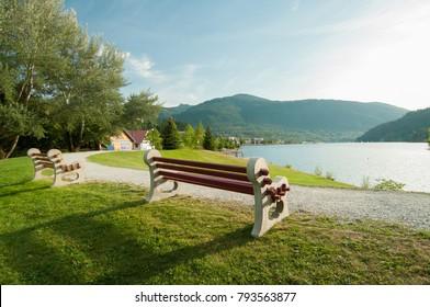 Cool Bench Beside Tree Images Stock Photos Vectors Shutterstock Machost Co Dining Chair Design Ideas Machostcouk