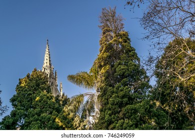 Neogothic style church surrounded by big trees