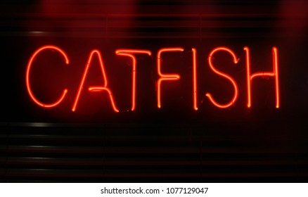 Neon Catfish Sign in Restaurant Window at  Night