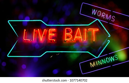 Neon Sign composite Image, Live Bait, Worms and Minnows