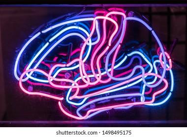 Neon Sign of Human Brain