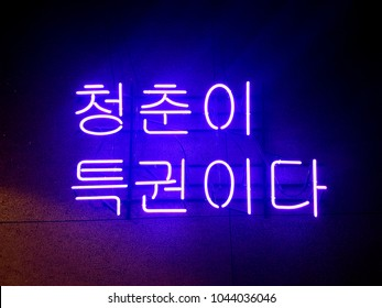 Neon sign was written in Korean which means ' Youth is your privilege.'