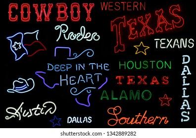 Neon Texas Sign Photo Composite