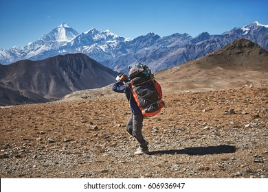 Nepalese male porter carrying heavy loads in Himalayas, Nepal
