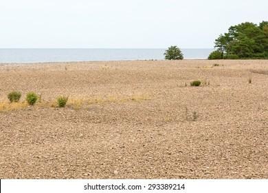 Neptune's fields at oland in Sweden