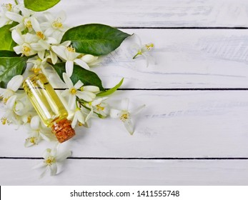 Neroli (Citrus aurantium) essential oil in bottle. Fresh white flowers, green leaf & neroli essential oil. Natural orange flower attar parfume (neroli essential oil) for aromatherapy, spa, massage.