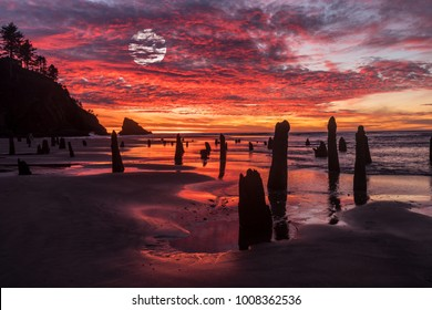 Neskowin Beach Oregon Sunset and 2000 Year Old Fossilized Spruce Trees known as Ghost Trees when a Minus Tide Occurs and Super Full Moon.