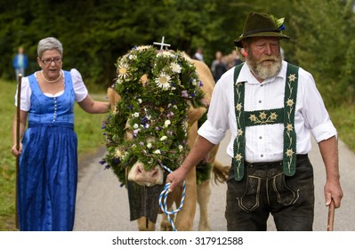 NESSELWANG, GERMANY - SEPTEMBER 16, 2015: The traditionally celebrated return of cattles with cowherds from mountain pasture to their cowshed in valley is an attraction for tourists and local people