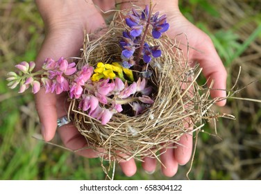 Nest with beautiful flowers