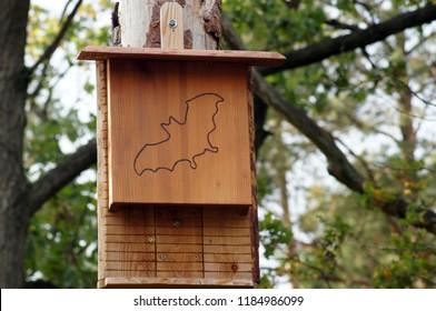 Nest box for Bats