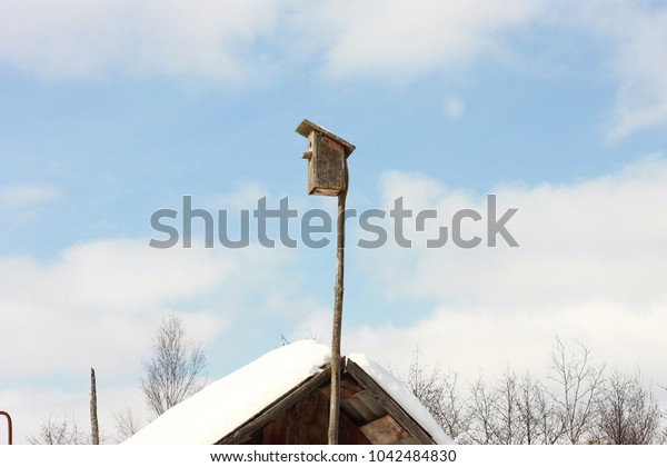 Nest box at a village house in spring