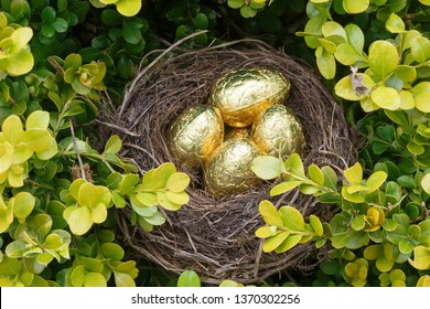 Nest with chocolate eggs wrapped in golden paper for Easter